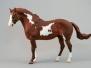 Pinto (Overo) Horses